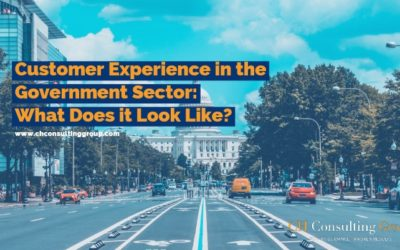 Customer Experience in the Government Sector